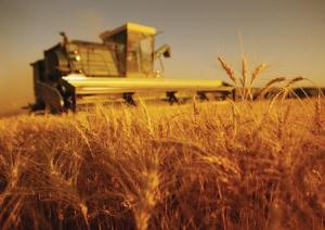 insurance for agriculture